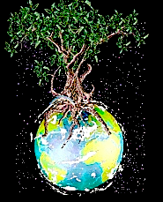 Olive tree on the world